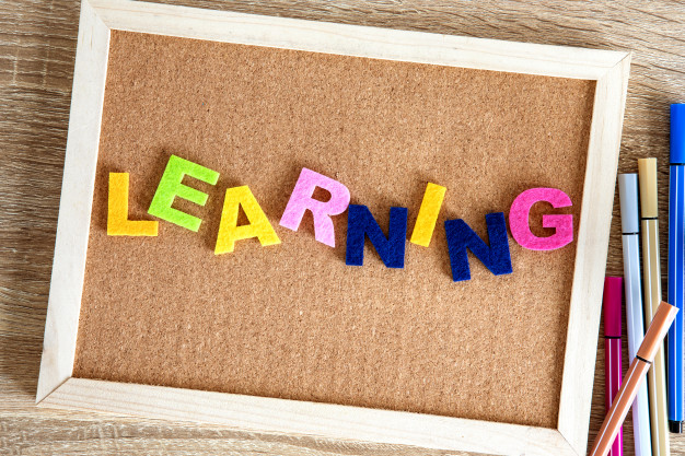 Culture and Language Training